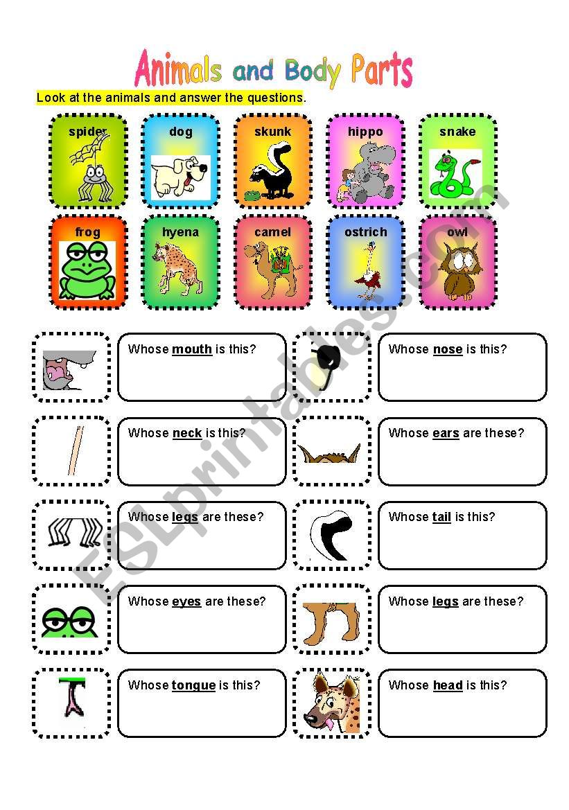 ANIMALS AND BODY PARTS worksheet