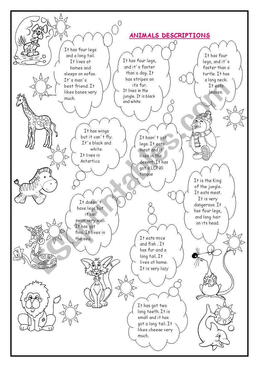 Animal descriptions 1 worksheet