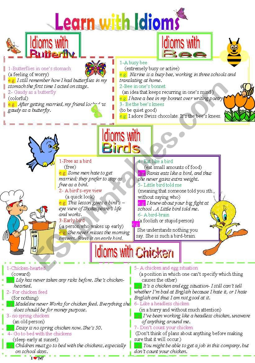 Learn with Idioms ( Part 16): Idioms with Butterfly, bee, Birds and Chicken