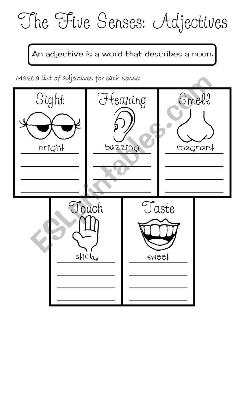Senses Worksheet - Sight |Worksheets About Senses