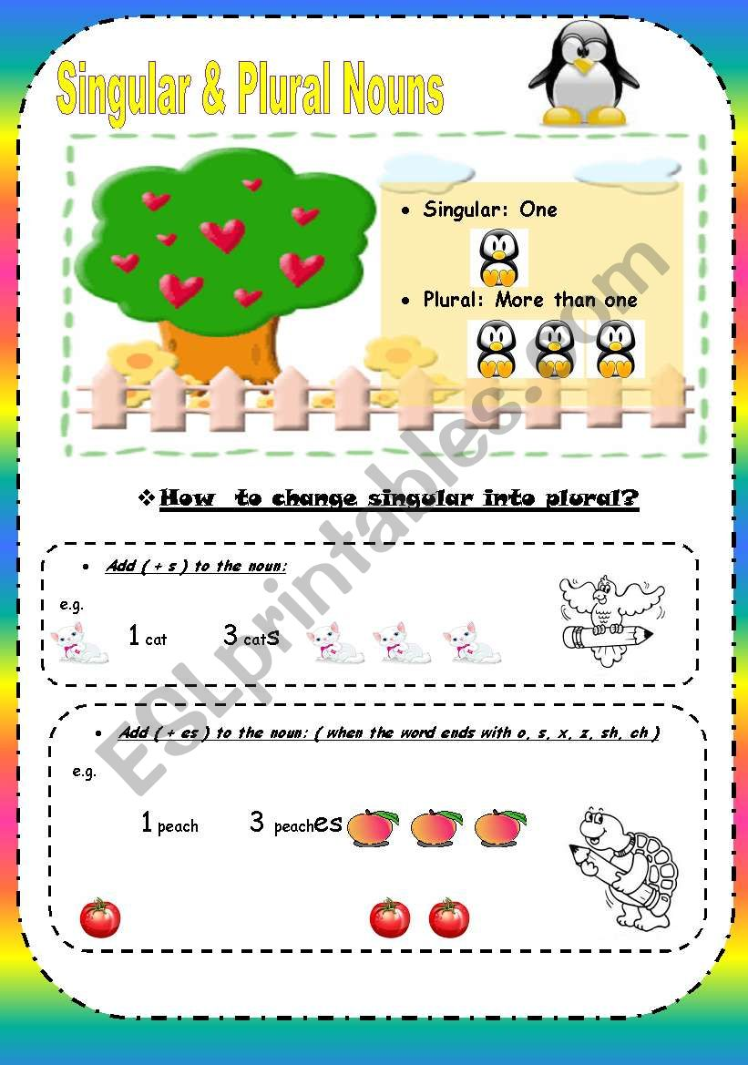 Singular and Plural nouns ( 4 Pages )