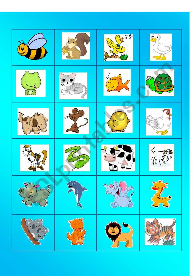 ANIMAL MEMORY CARDS worksheet