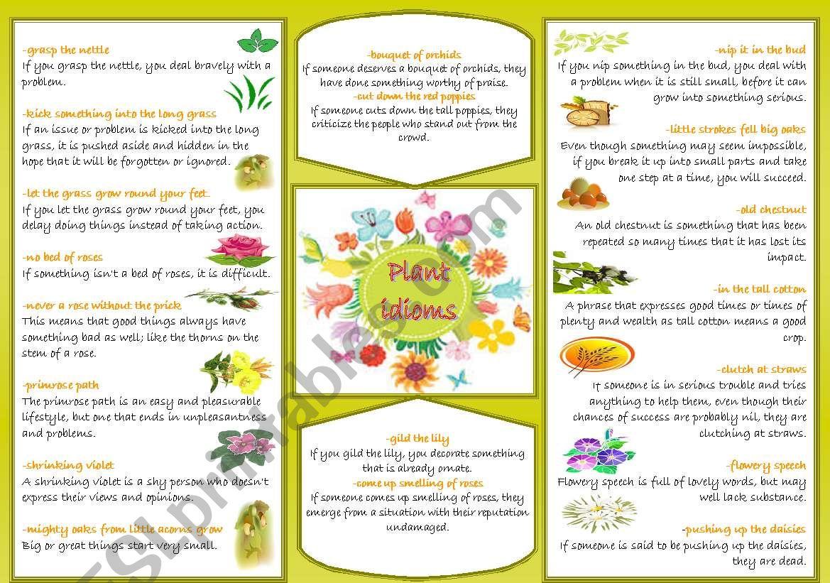 Plant idioms worksheet