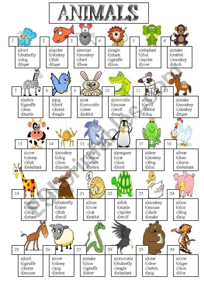 animal   ESL worksheet by death6784