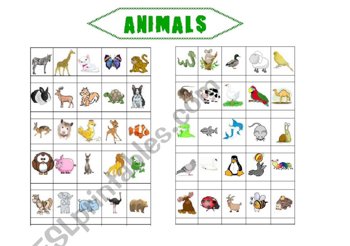 Animals (2 pages) worksheet