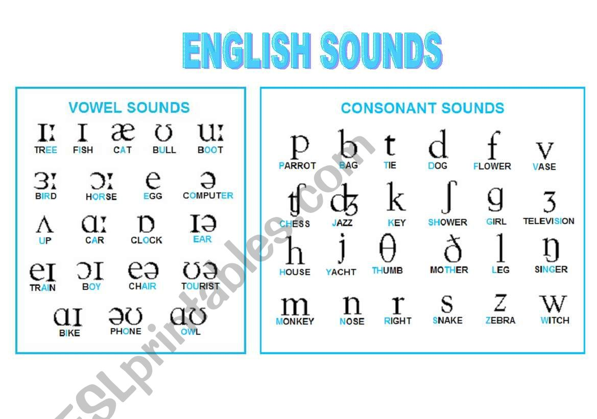 Phonetic Symbols Chart worksheet