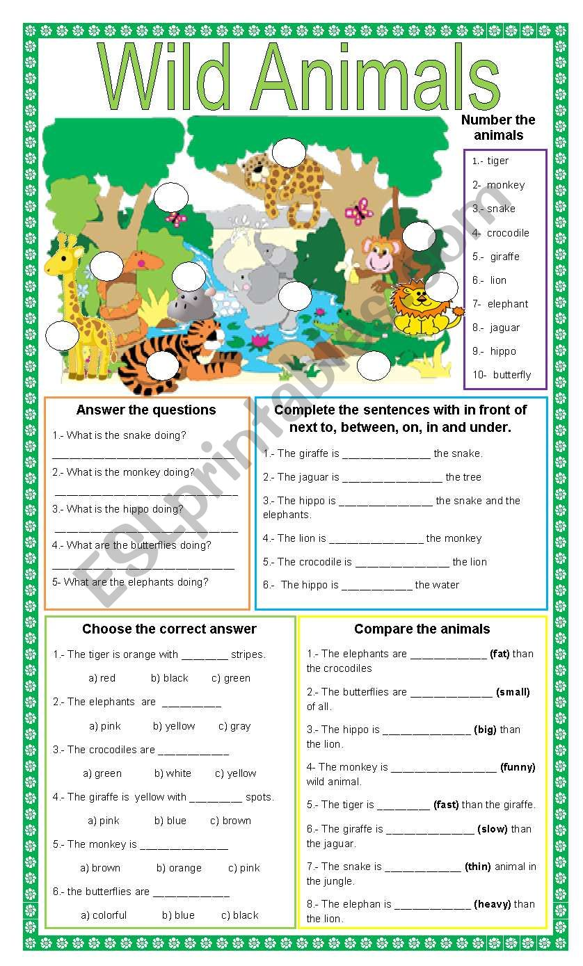 Wild animals + 5 different exercises + present continuous + prepositions + colors + comparatives and superlatives