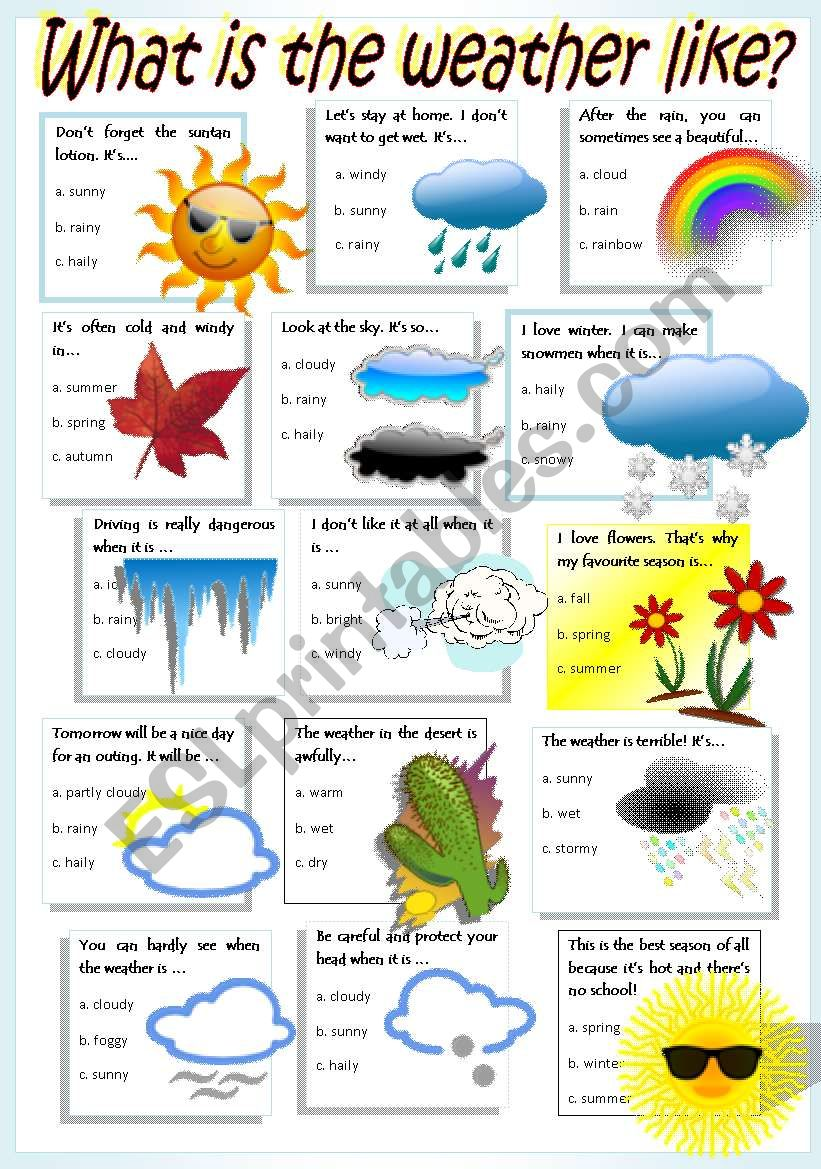 WEATHER & SEASONS worksheet