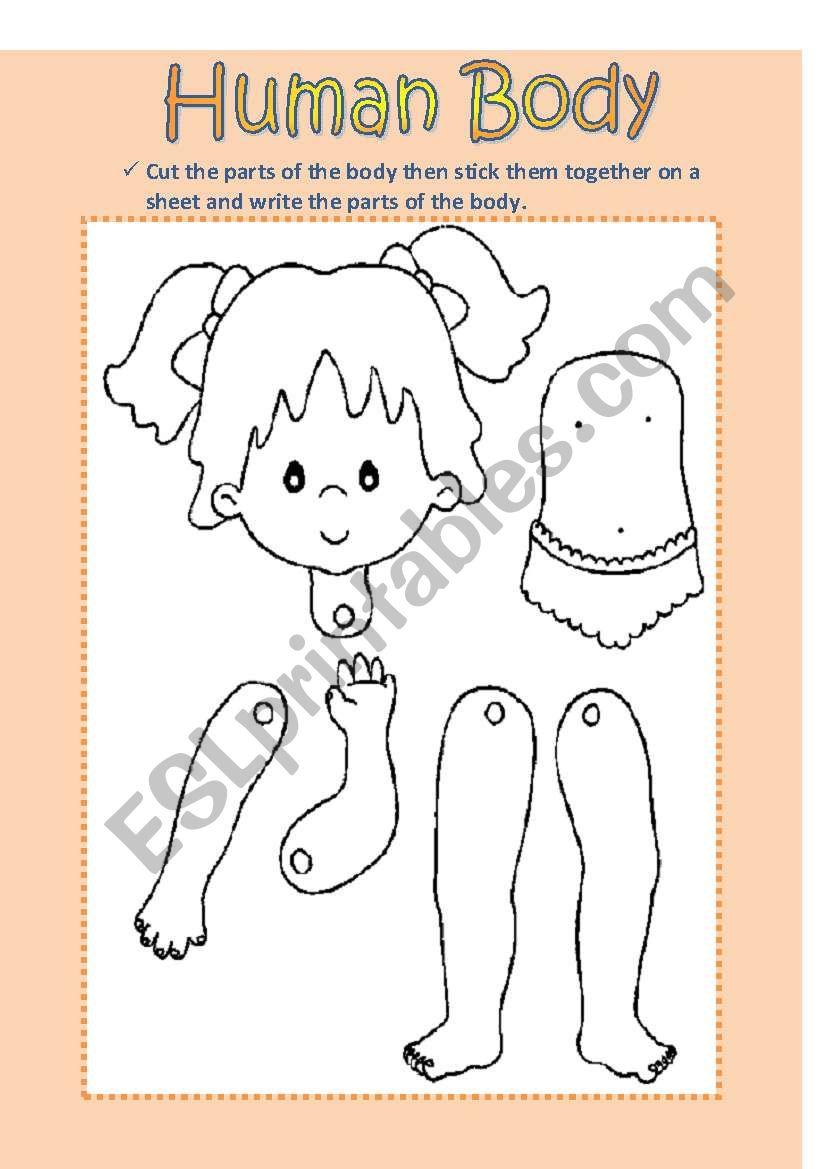 Human Body (Girl) worksheet