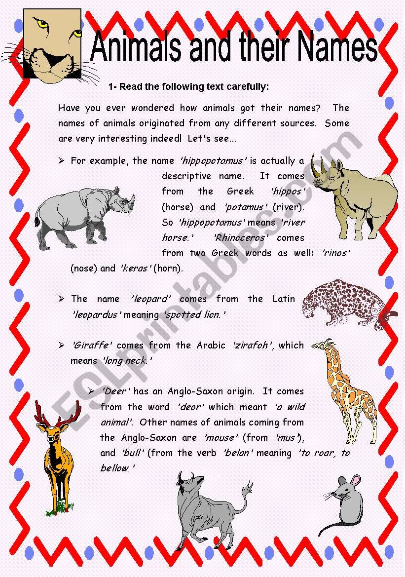 animals and their names reading comprehension with key esl worksheet by carinaluc. Black Bedroom Furniture Sets. Home Design Ideas
