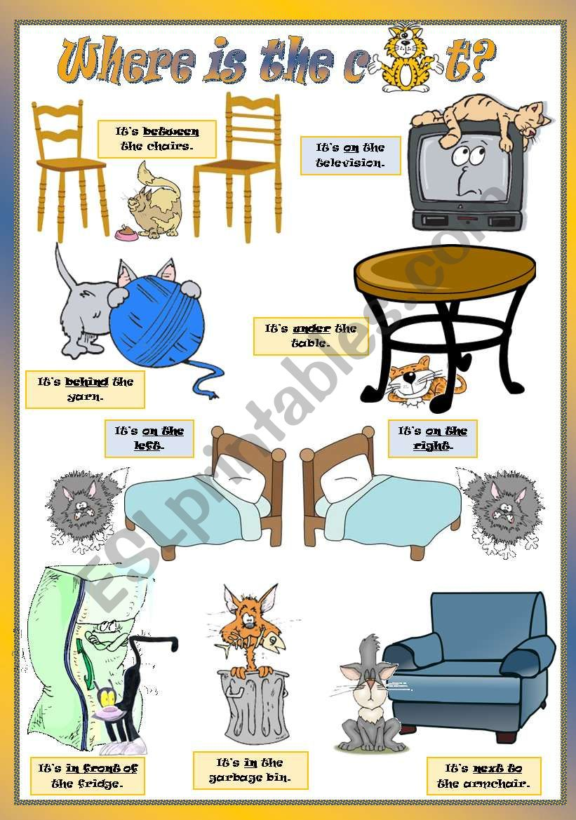 WHERE IS THE CAT? worksheet