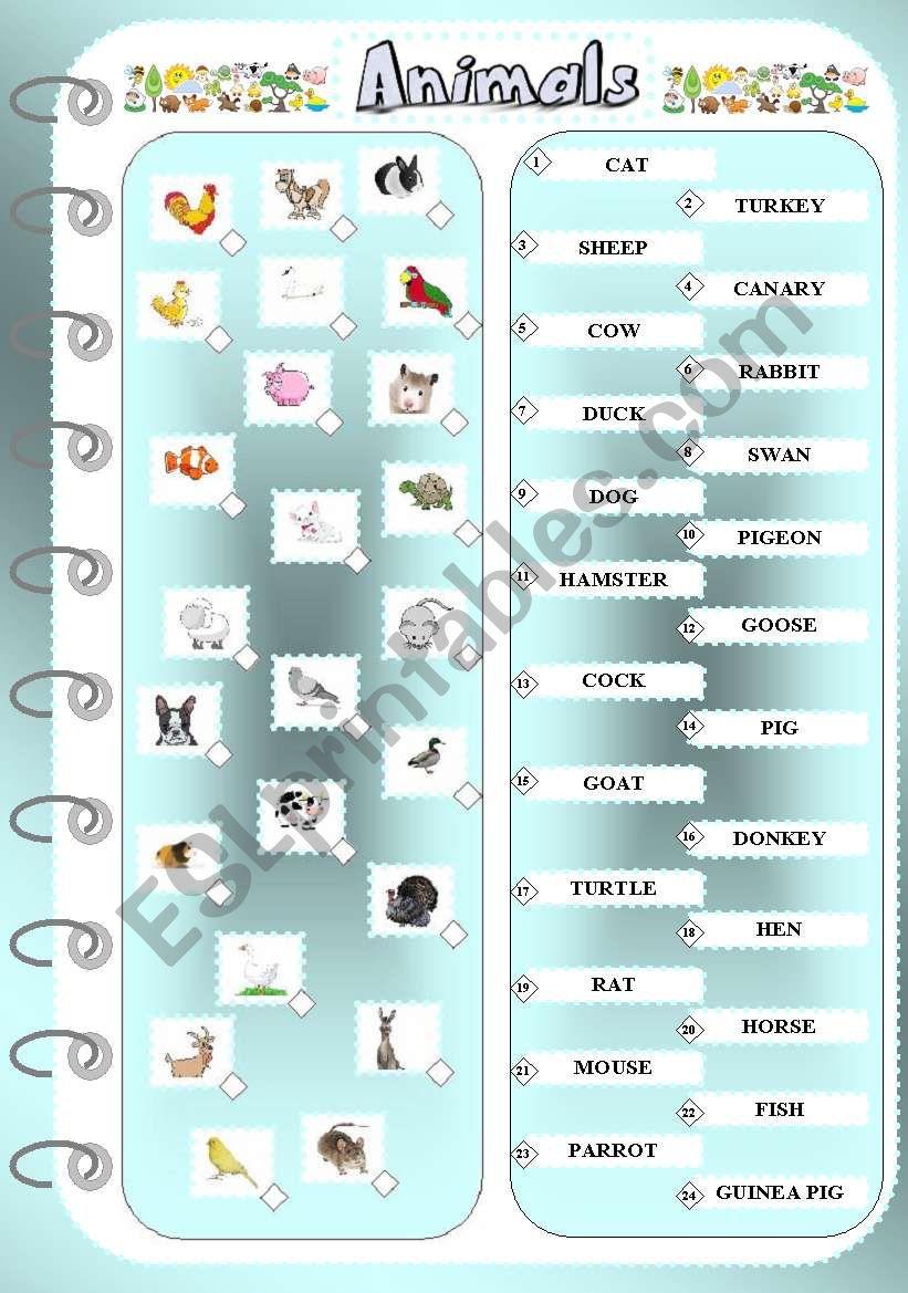 Animals 1 - Matching Exercise worksheet