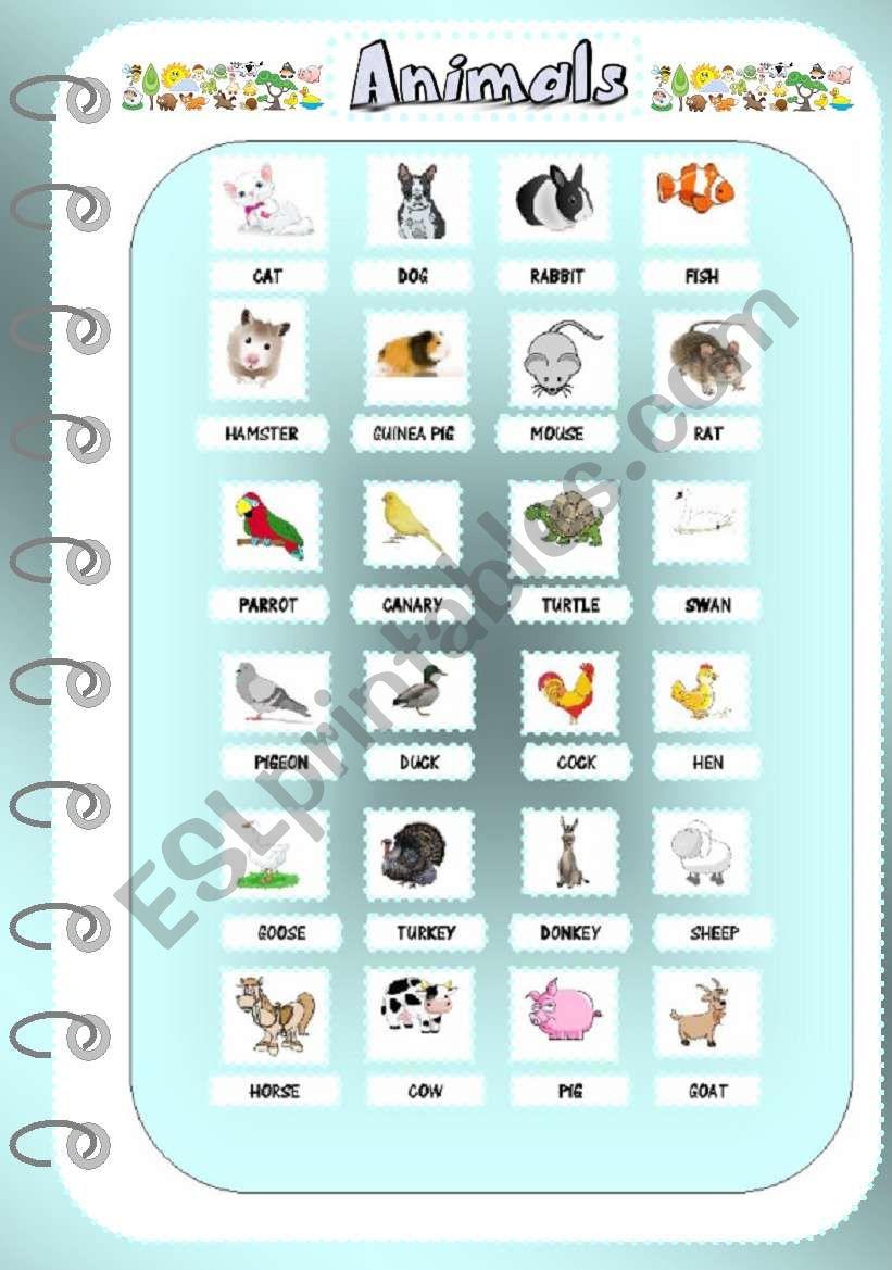 Animals 1 _Pictionary worksheet