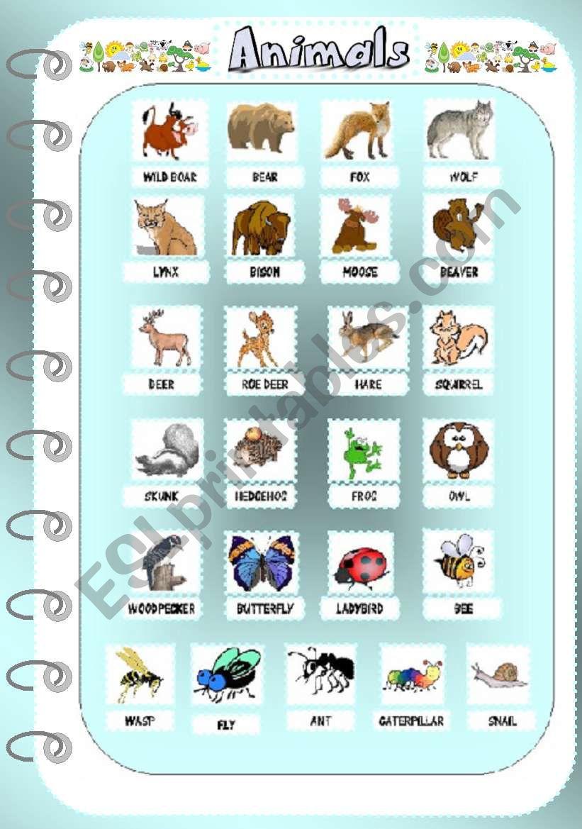 Animals 2 - Pictionary worksheet
