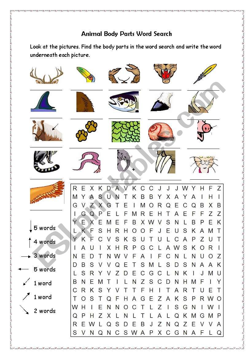 animal body parts word search esl worksheet by jennyber. Black Bedroom Furniture Sets. Home Design Ideas