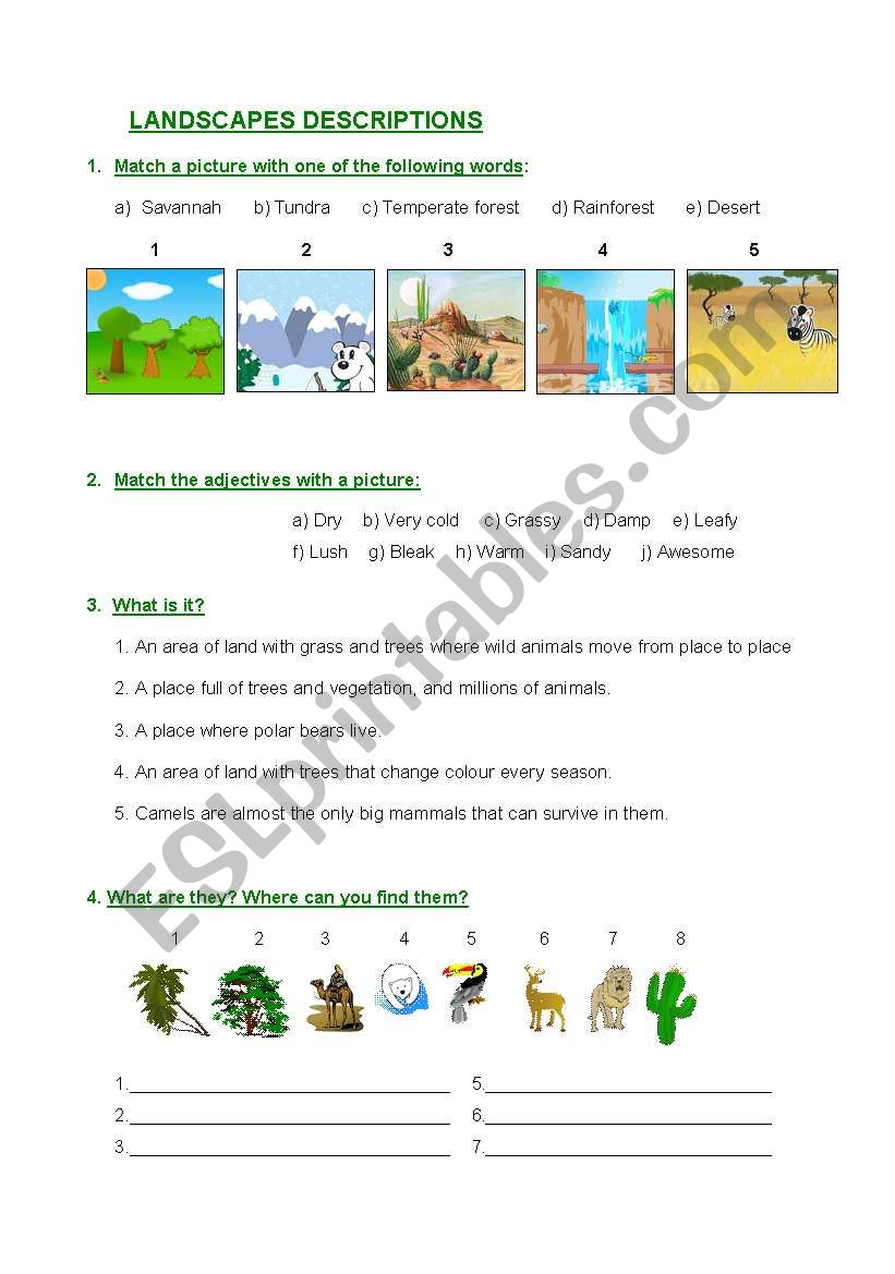 Landscape descriptions worksheet