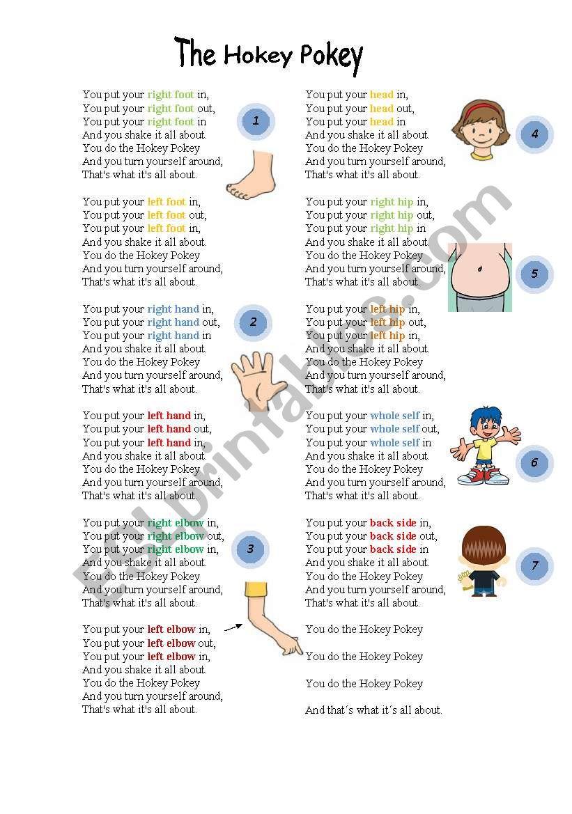 The hokey pokey song lyrics - ESL worksheet by piskisnins