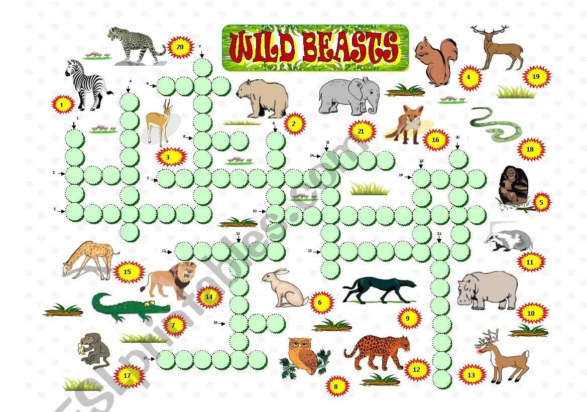 Wild beasts worksheet