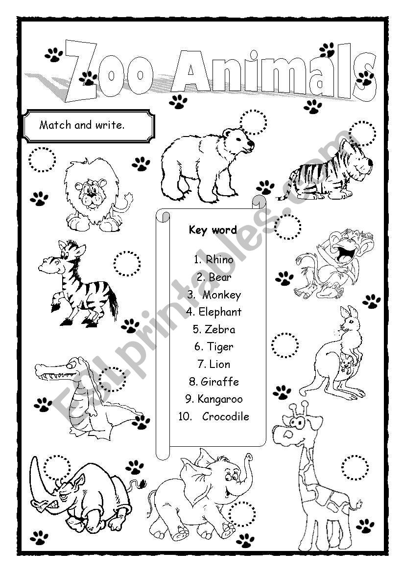 zoo animals esl worksheet by saifonduan. Black Bedroom Furniture Sets. Home Design Ideas