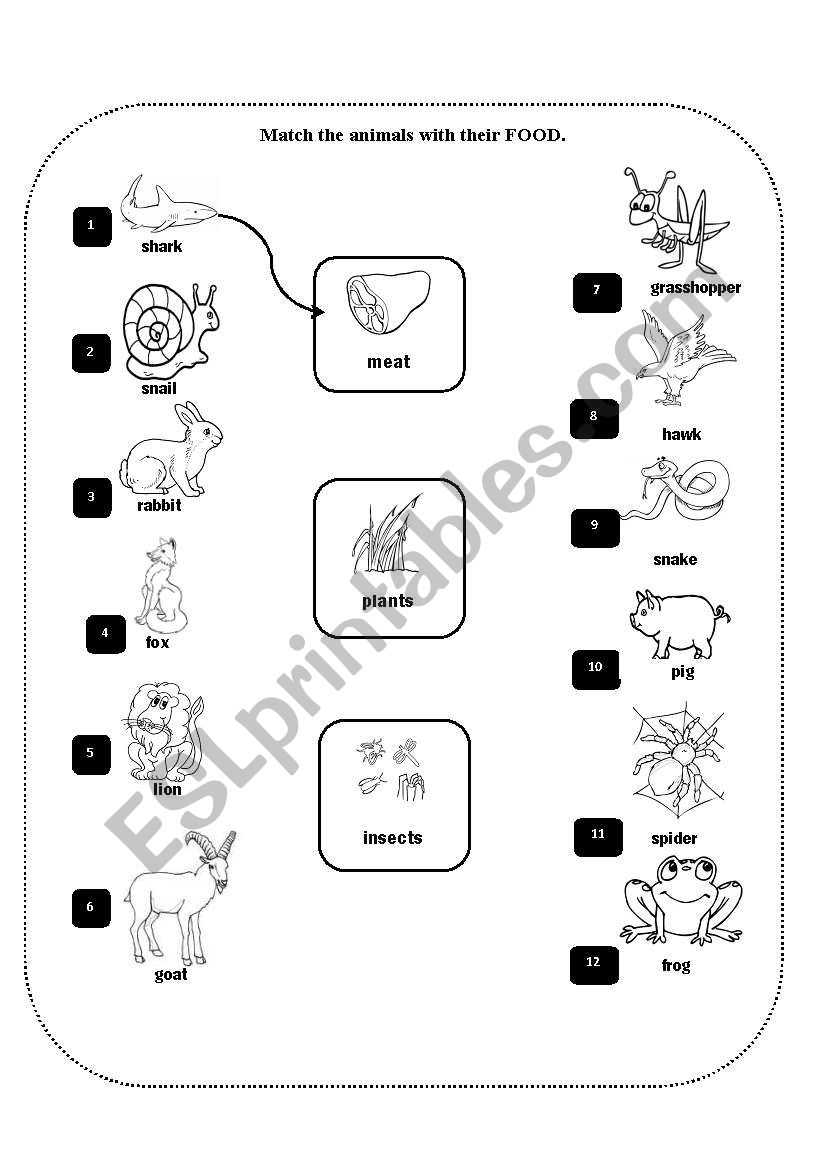 animal movements esl worksheet by claudiaabreu. Black Bedroom Furniture Sets. Home Design Ideas