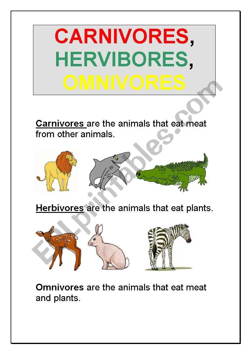 worksheet Carnivores Herbivores And Omnivores Worksheets english worksheets carnivores herbivores omnivores omnivores