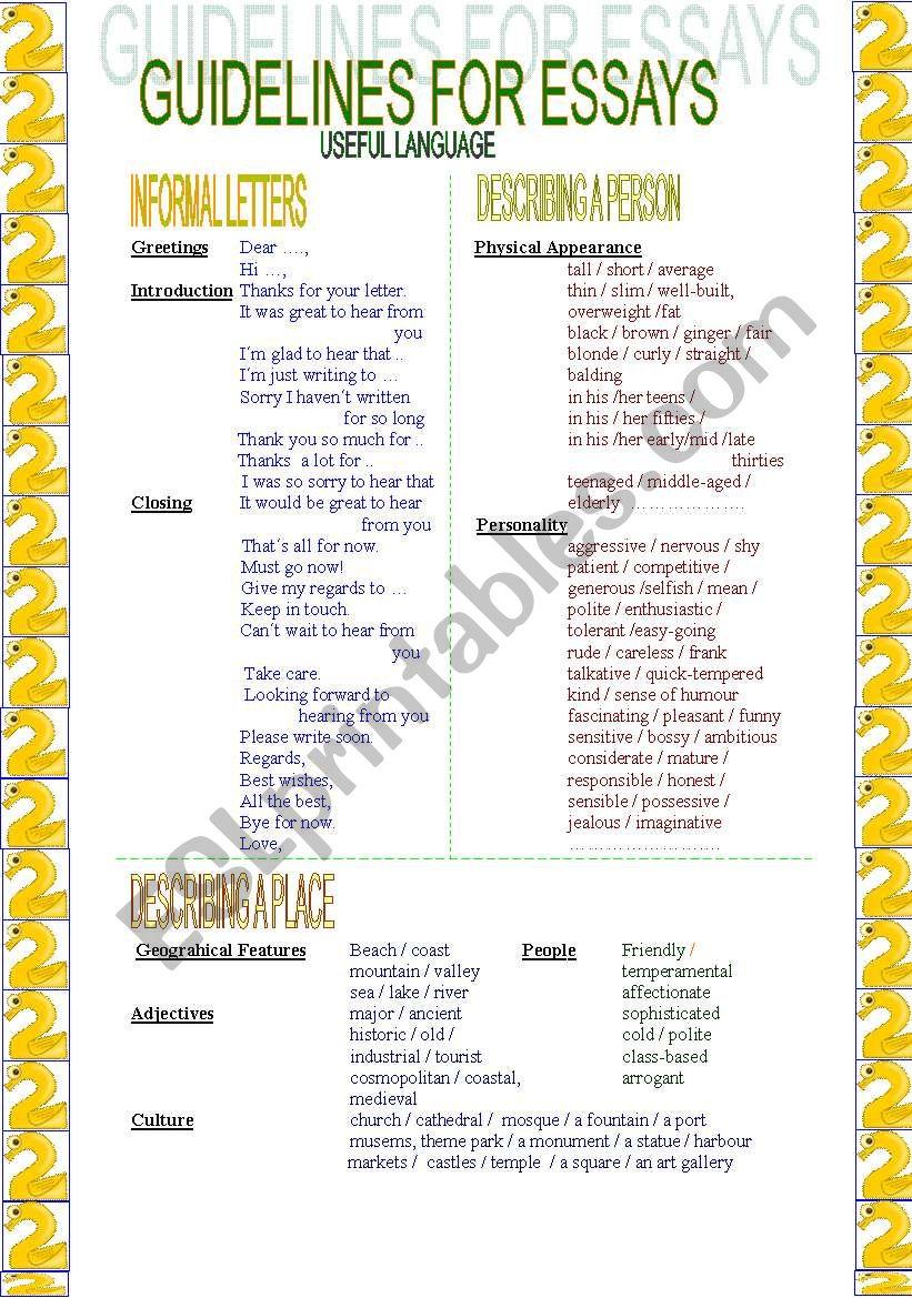 Guidelines for essays (2/ 2) worksheet