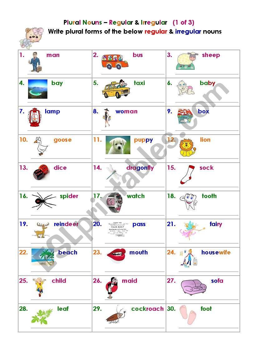 Plural Nouns – Regular & Irregular (1 of 3)