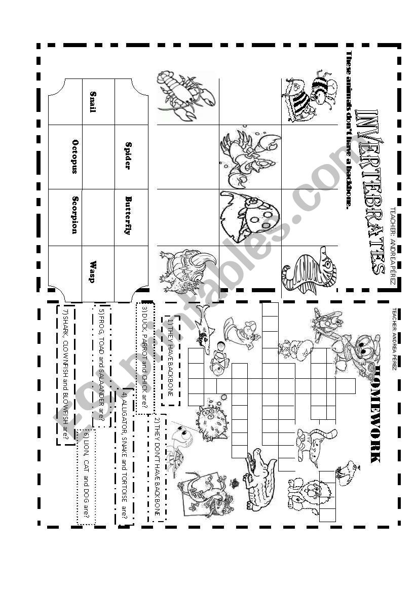 INVERTEBRATE ANIMALS worksheet