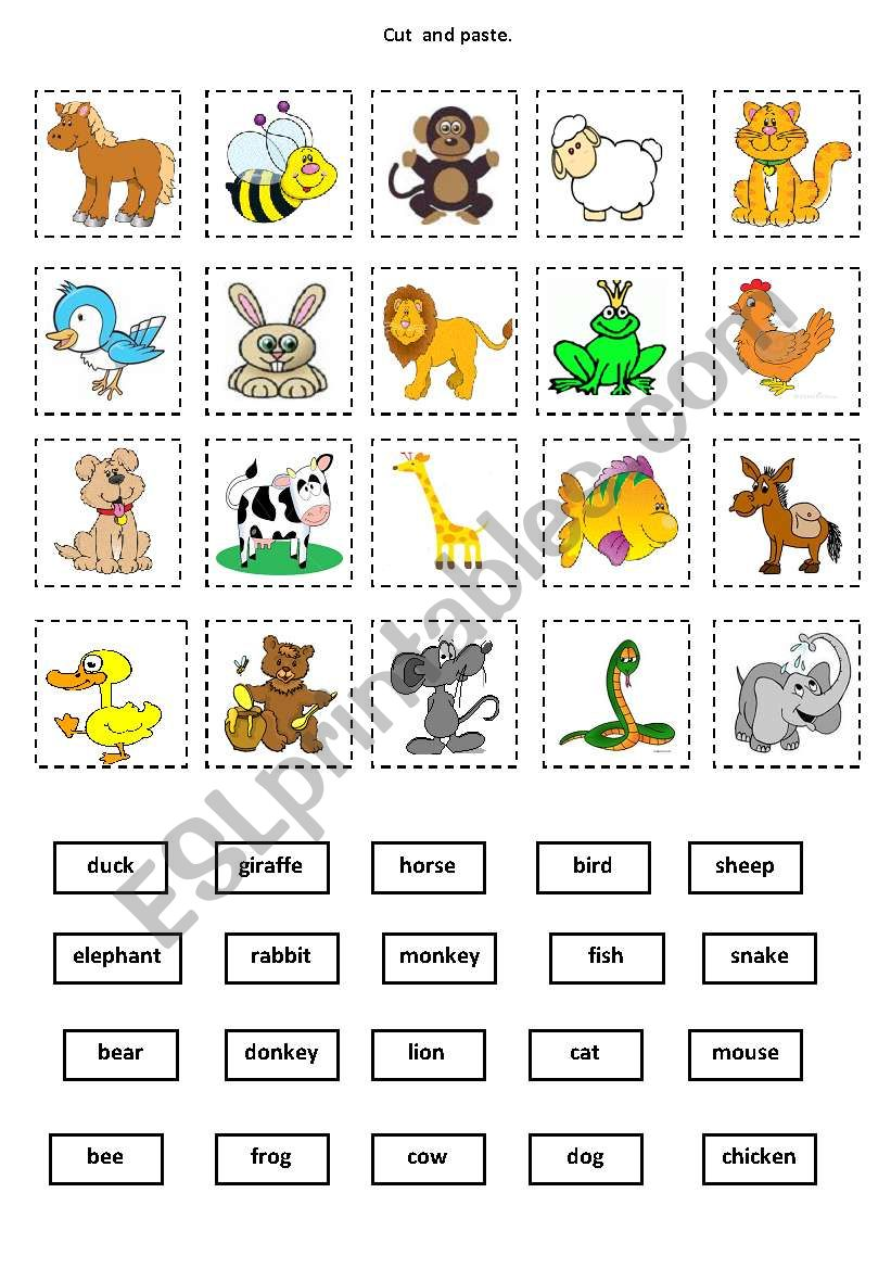 Animals Cut And Paste Esl Worksheet By Mystery Sea
