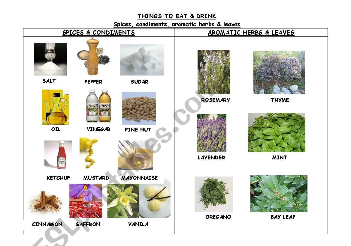 THINGS TO EAT & DRINK. SPICES, CONDIMENTS & AROMATIC HERBS
