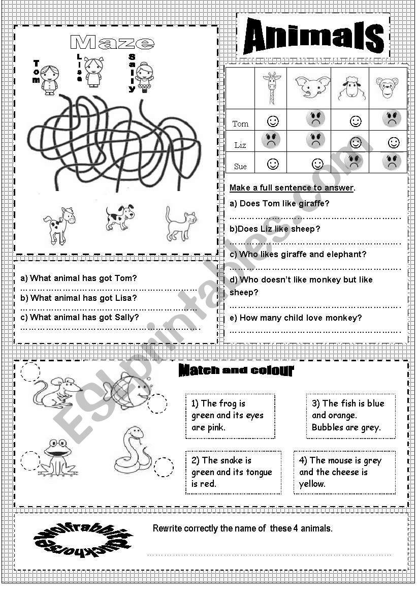 Animals TWO worksheet