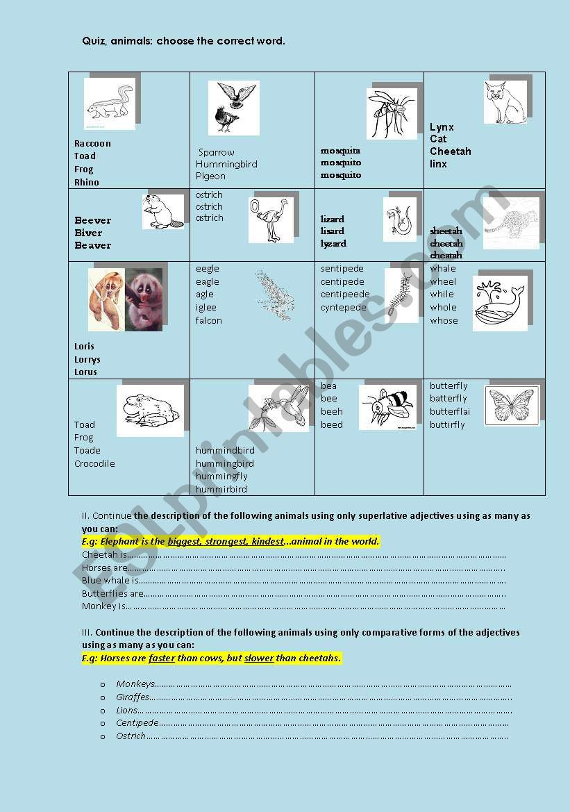 English worksheets: Quiz, animals, adjectives-comparative