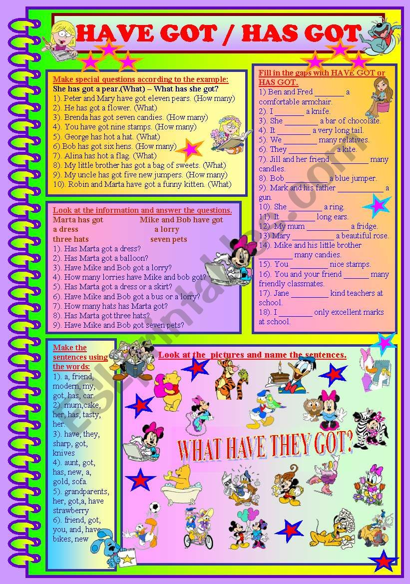HAVE GOT / HAS GOT worksheet