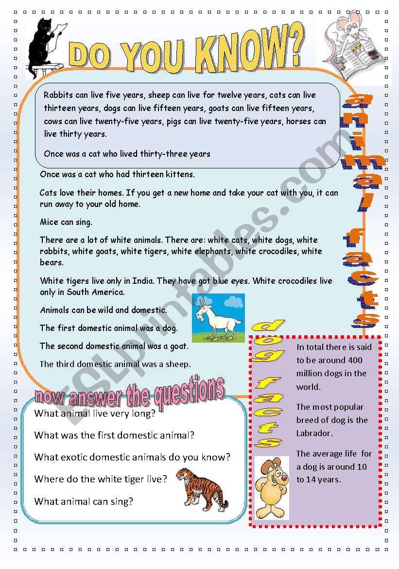 Animal facts. - ESL worksheet by englishspb