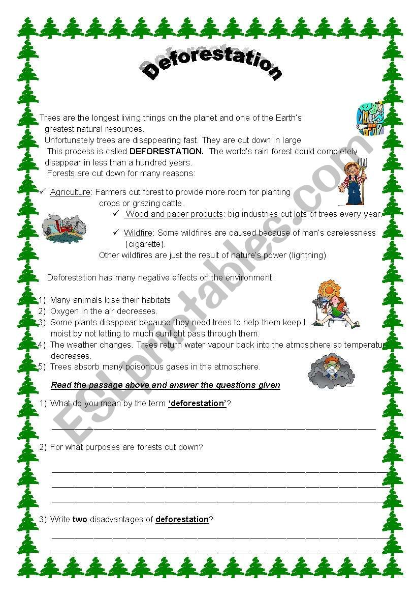 Deforestation worksheet