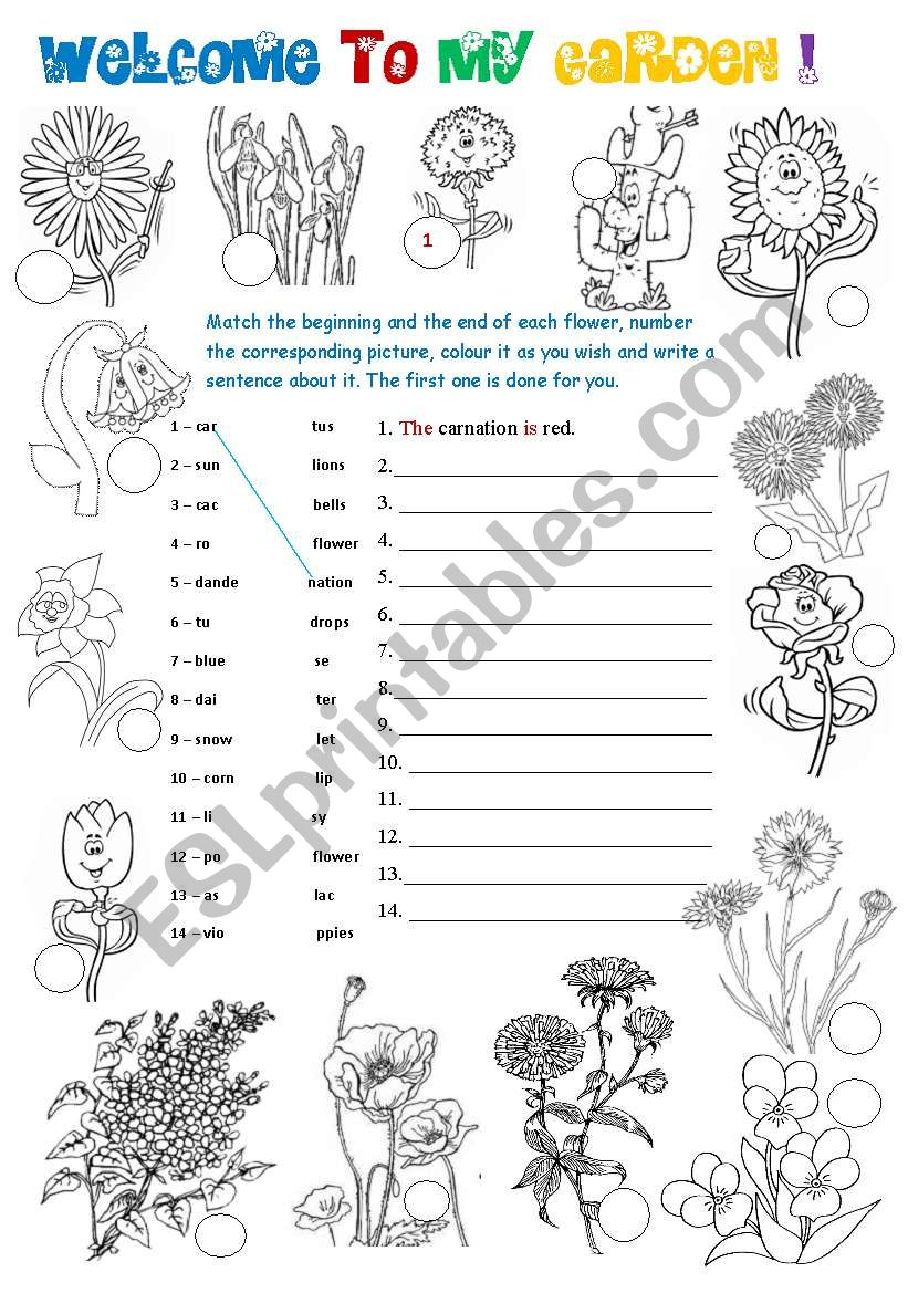 Welcome to my garden! - 2 pages - 3 activities - ESL ...