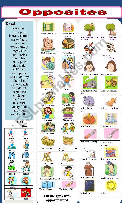 opposites worksheet