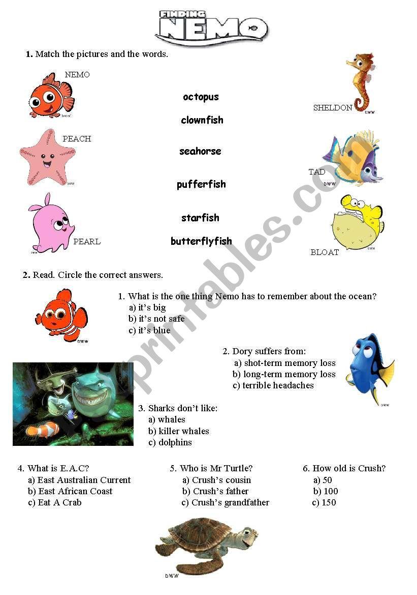 Finding Nemo Worksheet Checks Worksheet