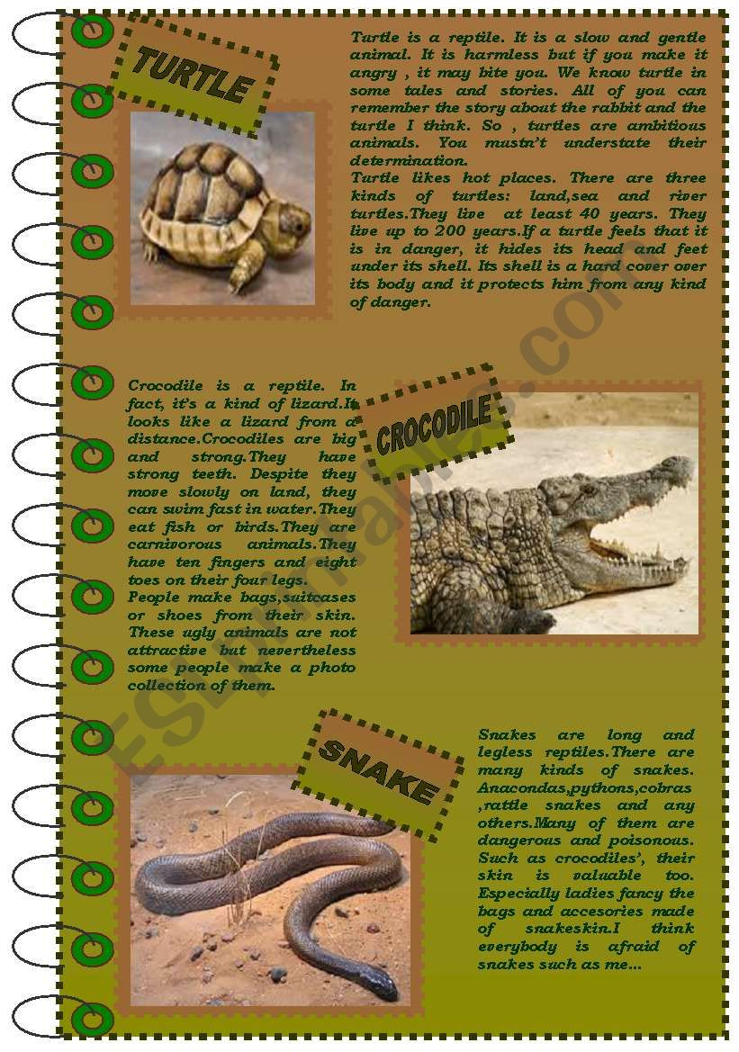 READING COMPREHENSION about reptiles (version 1)