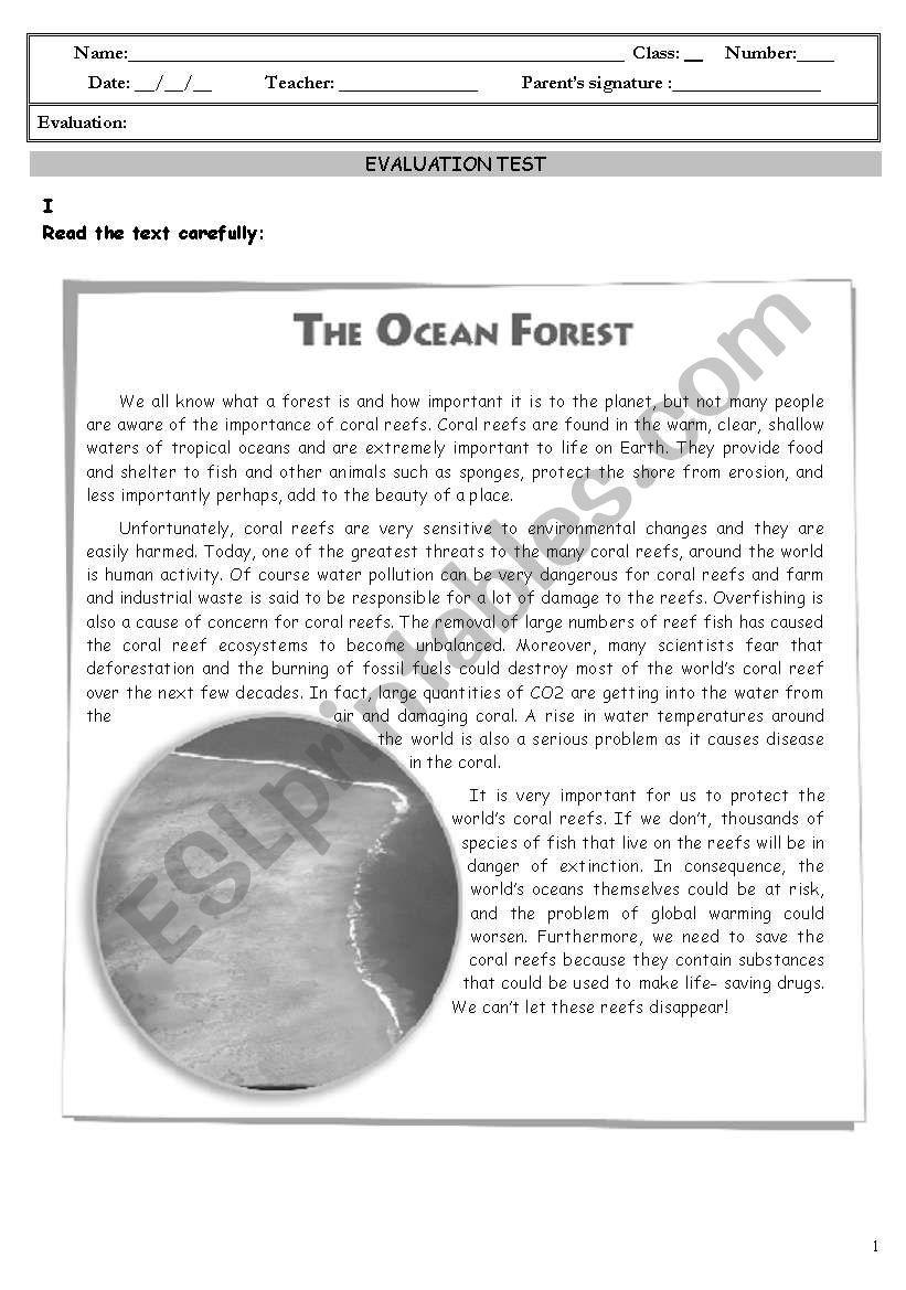 The environment - test worksheet