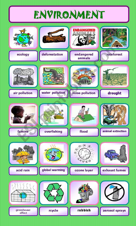 ENVIRONMENT (20 words) worksheet