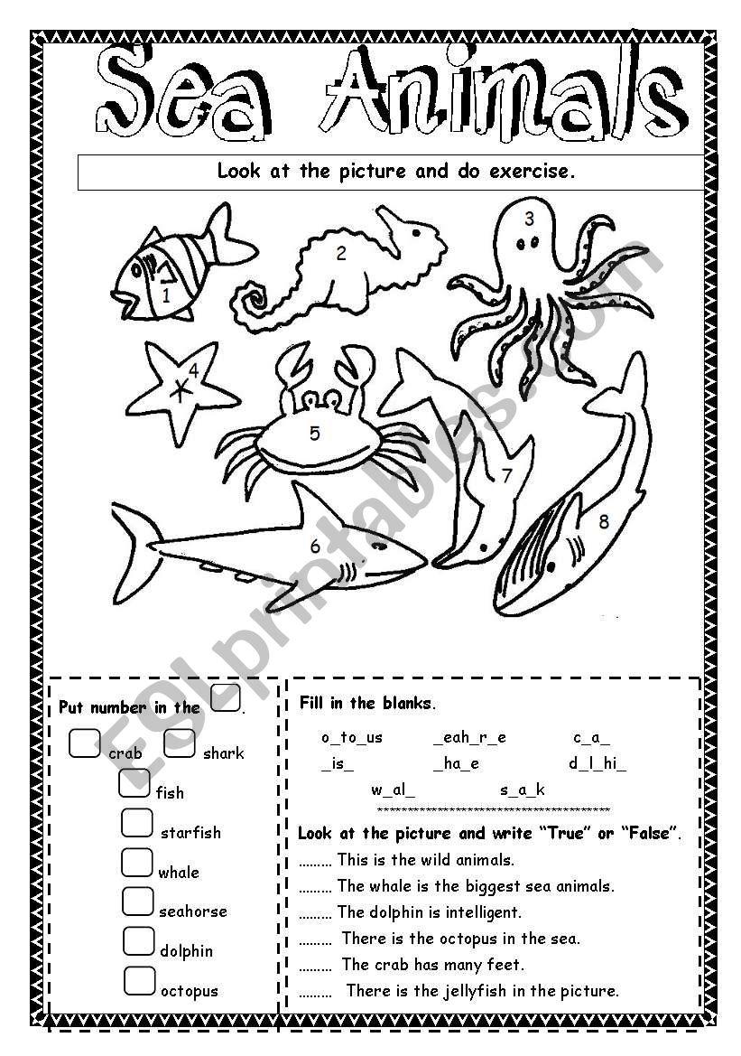 sea animals esl worksheet by saifonduan. Black Bedroom Furniture Sets. Home Design Ideas