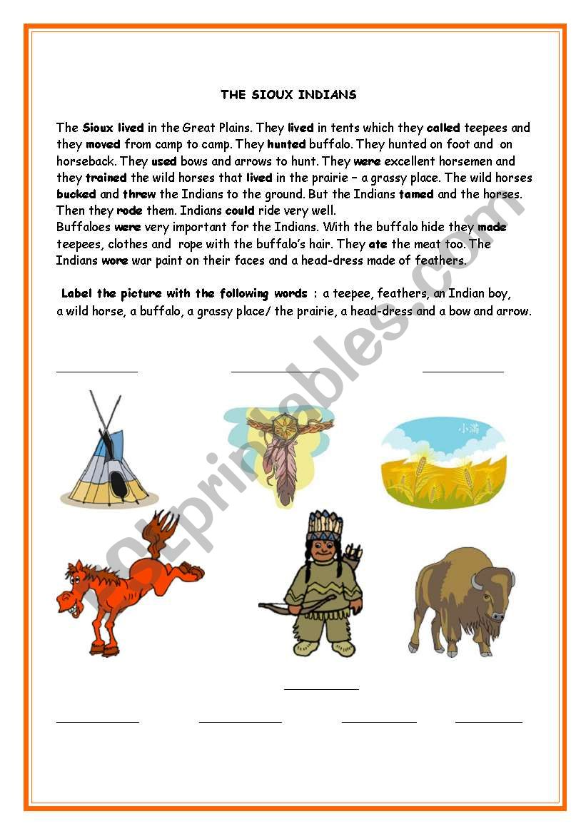 The Sioux Indians worksheet