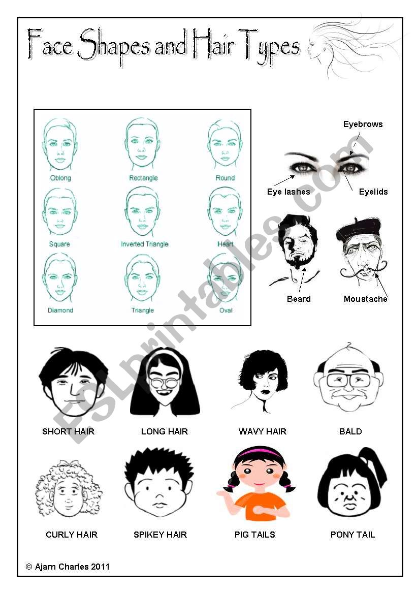 Admirable Face Shapes And Hair Types Esl Worksheet By Disappointed Schematic Wiring Diagrams Phreekkolirunnerswayorg
