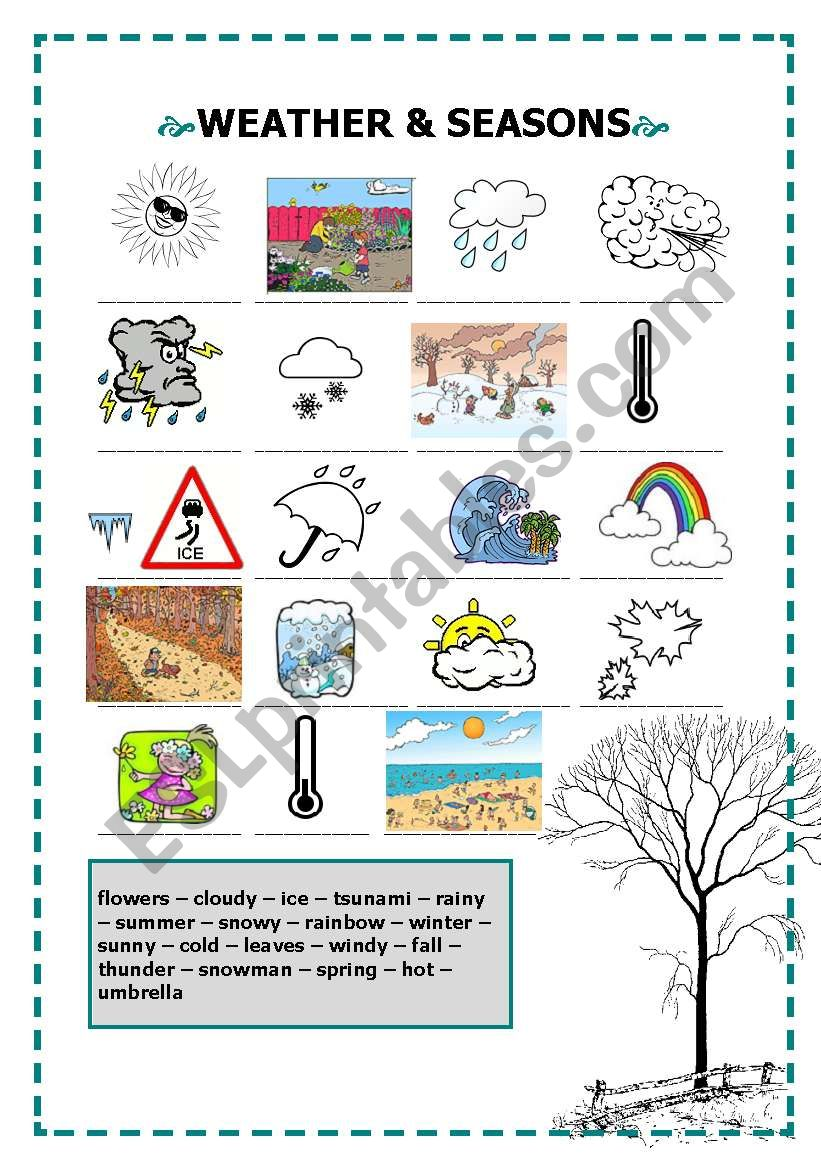 Weather and seasons worksheet