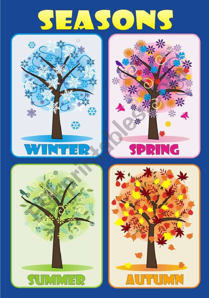 SEASONS - Poster worksheet