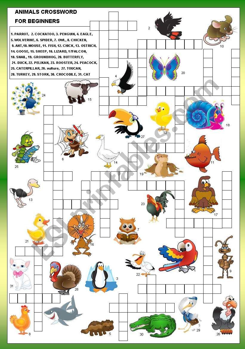ANIMALS CROSSWORD - FOR BEGINNERS + B&W