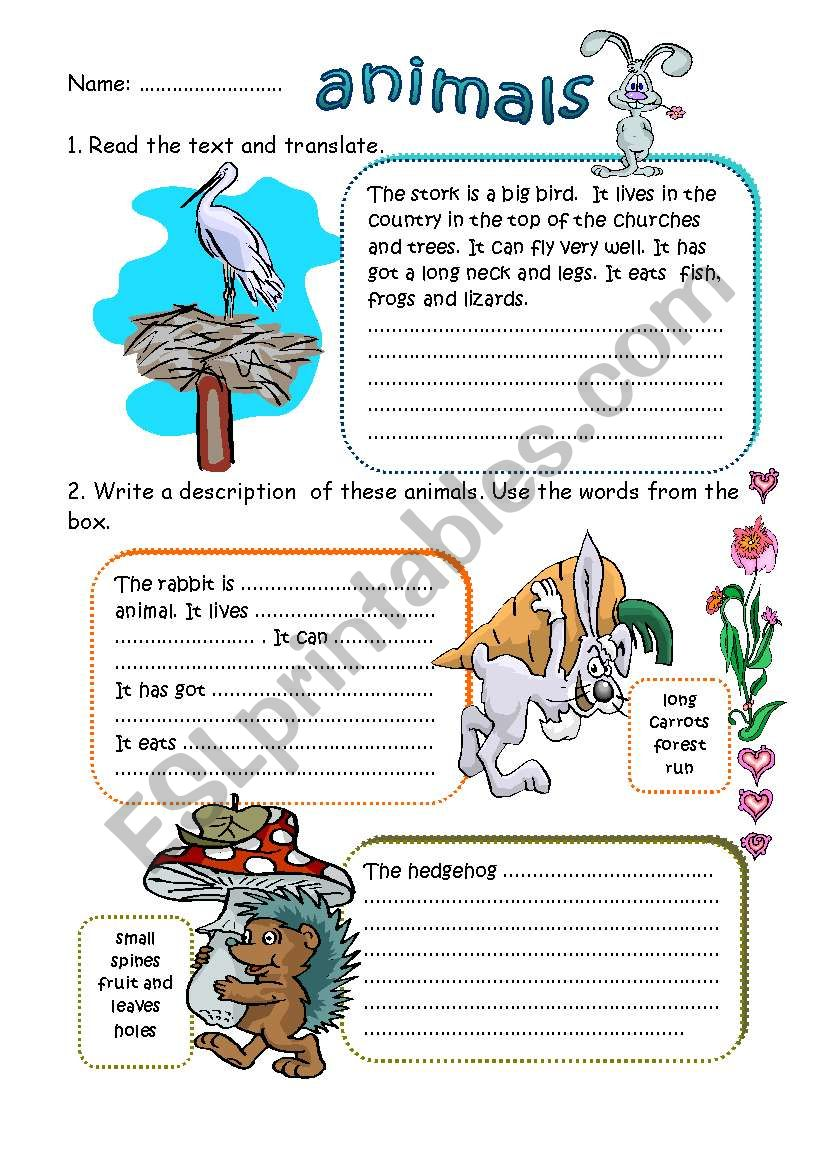 WRITING ABOUT ANIMALS worksheet