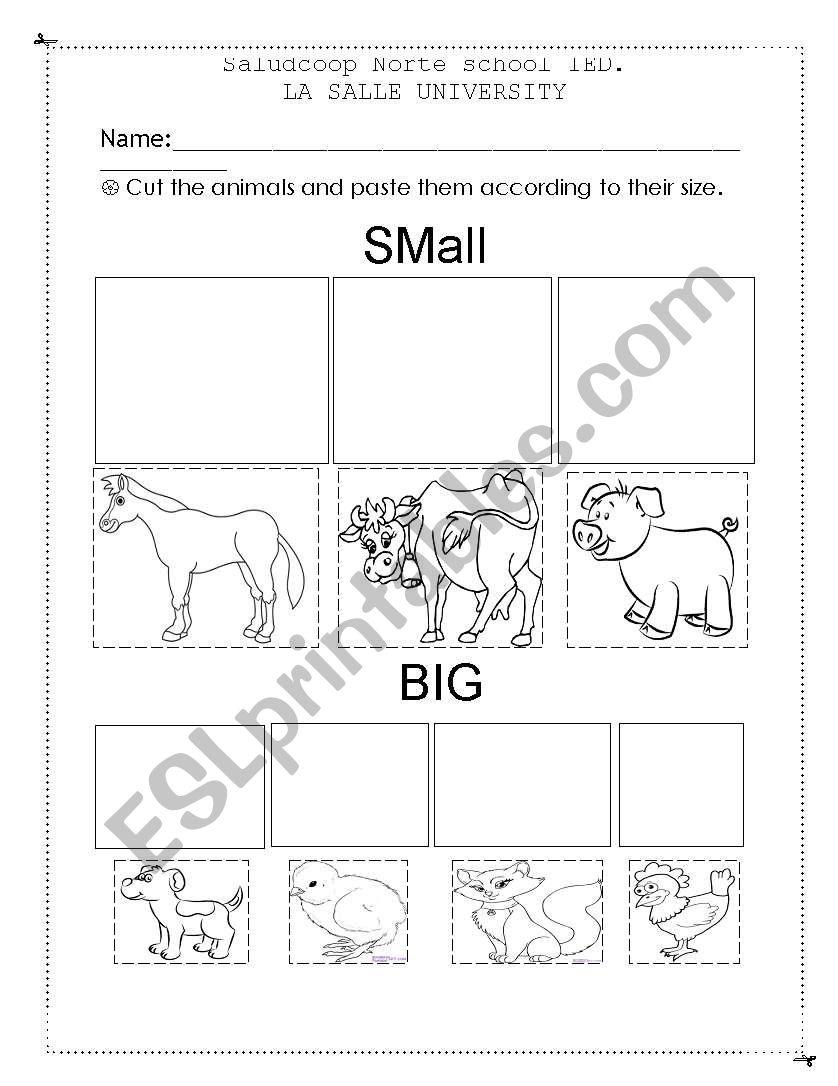 Sizes worksheet