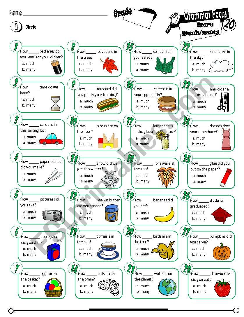 Grammar Focus Series_20 More Much & Many (Fully Editable + Key)